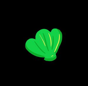 夏日海滩绿色贝壳