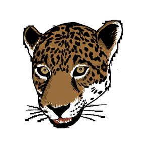 手绘 猎豹 png素材
