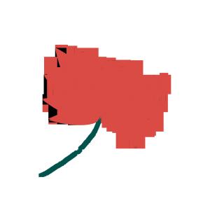 2018红色半透明盛放的红莲PNG素材