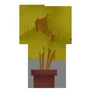 春天手绘植物大叶子盆栽