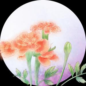 手绘植物花朵PSD
