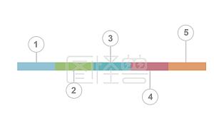 PPT时间轴序列号分类条例