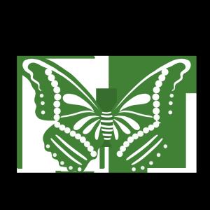 绿色的蝴蝶手绘卡通