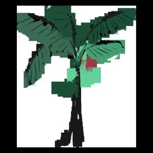 手绘水彩绿色芭蕉树