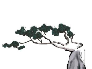 中国风水墨节节岩松图